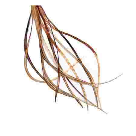 Перо для волос UrbanBird Standart + (26-29 см) (Plume Indigene Variant)